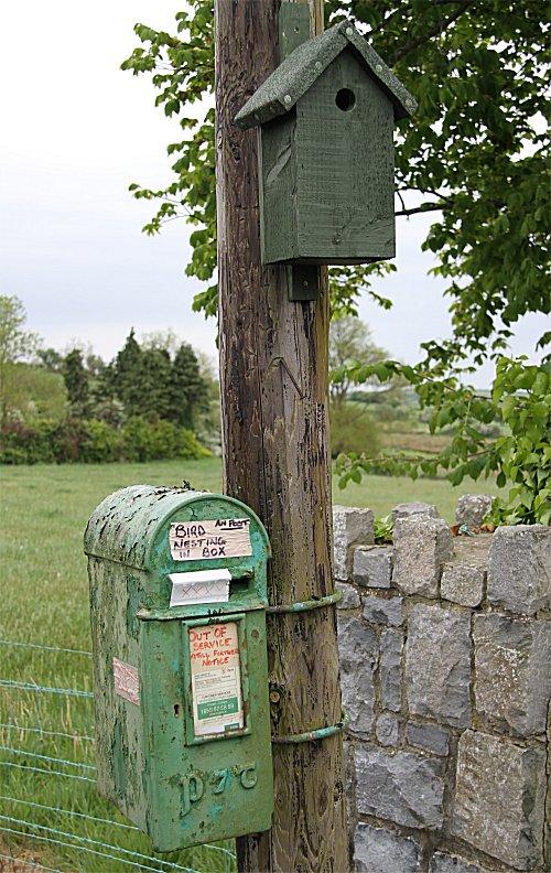 ClarePics2011/treesparrowjeffcop.jpg